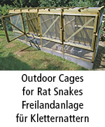 Outdoor Cages for Rat Snakes